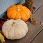 冬至にかぼちゃとゆず湯は基本!その意外な理由って?